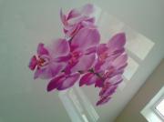 Белый глянец с орхидеей (2)